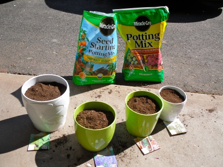 Potted Herbs - Miracle Grow